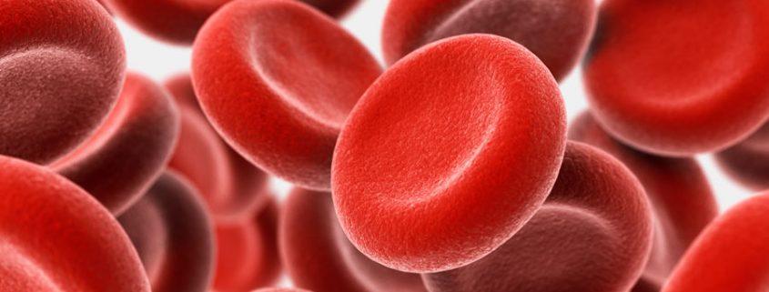 Eisenmangel - Rote Blutzellen - Osteopathie Kiel