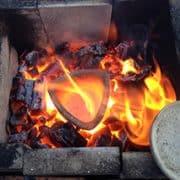 Das Bild zeigt ein Feuer und die Calcination Rosen